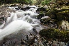 Felsiger Fluss lizenzfreies stockbild