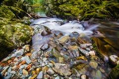 Felsiger Fluss stockfoto