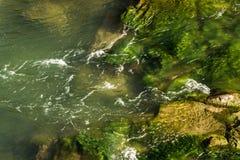 Felsiger Fluss eingehüllt in Wasser für den ganzen Rahmen lizenzfreie stockfotografie