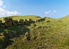 Felsiger Hügel Stockfotografie
