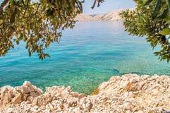 Felsiger Strand mit Büschen und Baumaste und haarscharfes Blau Stockbilder