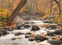 Felsiger Strom mit Brücke im Herbst Stockbilder