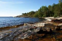 Felsiges Ufer mit Wald Lizenzfreie Stockfotos
