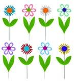 Felt Flowers isolated on white stock image