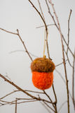 Felt Ornaments. Cute nature themed acorn felt ornament hanging from a tree branch Stock Photography