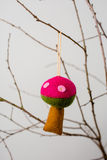 Felt Ornaments. Cute nature themed mushroom felt ornament hanging from a tree branch Royalty Free Stock Images