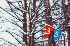 Sports flags on the tree. Felt Pennant with Copy Space  on Royalty Free Stock Images