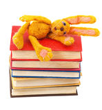 Felt soft toy rabbit lies on stack of books Stock Photography