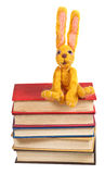 Felt soft toy rabbit sits on stack of books Royalty Free Stock Images