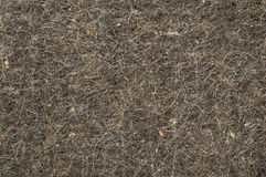 Felt texture Royalty Free Stock Photos