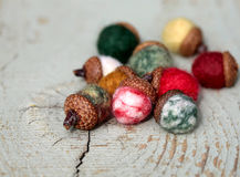 Felted Acorns Stock Image