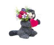 Felted raccoon with heart Royalty Free Stock Image