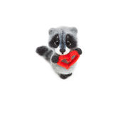 Felted raccoon Royalty Free Stock Images
