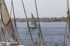 Felucca在尼罗的河船,和撒哈拉大沙漠后边在Aswa 库存照片