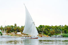 Felucca, παραδοσιακό ξύλινο sailboat στο Νείλο, Αίγυπτος στοκ εικόνα με δικαίωμα ελεύθερης χρήσης