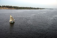 Felucca boat on the Nile River. (Egypt). Felucca(boat) on the Nile River Royalty Free Stock Photo