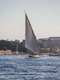 Felucca Boat on River Nile. A felucca is a traditional wooden sailing boat used in protected waters of the Red Sea and eastern Mediterranean and particularly Royalty Free Stock Image