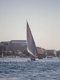 Felucca Boat on River Nile. A felucca is a traditional wooden sailing boat used in protected waters of the Red Sea and eastern Mediterranean and particularly Stock Photo