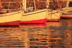 Felucca boats at the harbor at sunset, Luxor Royalty Free Stock Photo