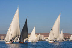 Felucca boats sailing Nile in Egypt. Africa Royalty Free Stock Photos