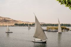 Felucca boats sailing on the Nile. Some traditional felucca boats sailing on the Nile at Aswan in Egypt Royalty Free Stock Photos