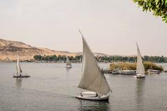 Felucca fartyg som seglar på Nilen royaltyfria foton