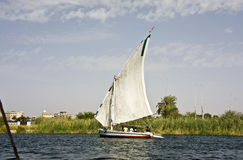 Felucca on the Nile. A felucca sails on the Nile in Egypt Royalty Free Stock Photography