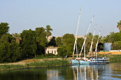 Felucca on the Nile. A felucca sails on the Nile in Egypt Royalty Free Stock Image