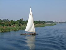 Felucca on the Nile. Coastal scenery showing a felucca on the Nile in Egypt Royalty Free Stock Photography