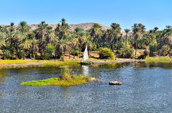 Felucca on the Nile River in Egypt. Felucca, a traditional Egyptian boat, in a natural setting, at the bank of the river Nile stock photo