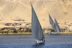 Felucca river boat on the Nile, with the Sahara behind in Aswa Royalty Free Stock Photo