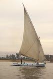 felucca rzeka Nilu Obraz Stock