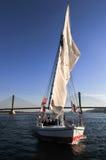 Felucca Sailing - Aswan Bridge, Egypt Royalty Free Stock Photo