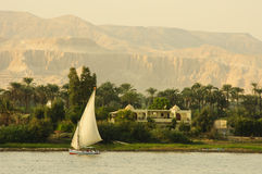 Felucca sailing down the Nile. Luxor, Egypt royalty free stock photography