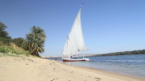 Felucca, traditional wooden sailing boat on shore of Nile. stock video footage