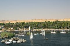 Feluccas on the nile Royalty Free Stock Photo