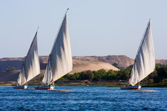 Feluccas on the Nile. Feluccas sailing on the Nile, Egypt stock images