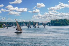 Feluccas sailing along the Nile River - Egypt royalty free stock photography