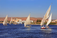 Feluccas sailing on the river Stock Image