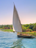 Feluka sailing on Nile Royalty Free Stock Photos