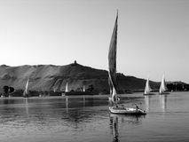 Felukahs sur le Nil dans B/W photos libres de droits