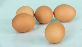 Fem ägg Arkivbild