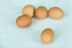 Fem ägg Arkivfoto