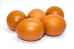 Fem ägg som isoleras på vit bakgrund royaltyfri foto