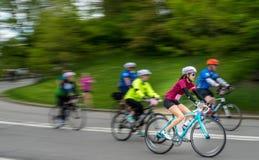 Fem Boro Bike Tour Arkivfoton