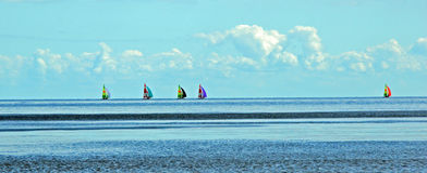 Fem colouful segelbåtar på den panorama- Östersjön - royaltyfria foton