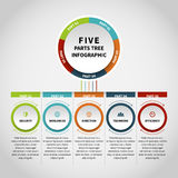 Fem delar träd Infographic Arkivfoto