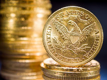 Fem dollar guld- mynt Arkivfoto