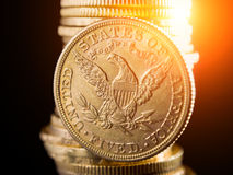 Fem dollar guld- mynt Arkivbilder