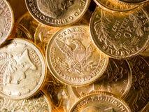 Fem dollar guld- mynt Royaltyfri Fotografi